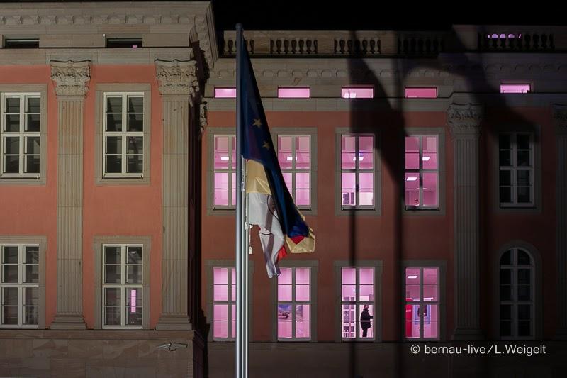 20140118 Parlament brandenburg 5496