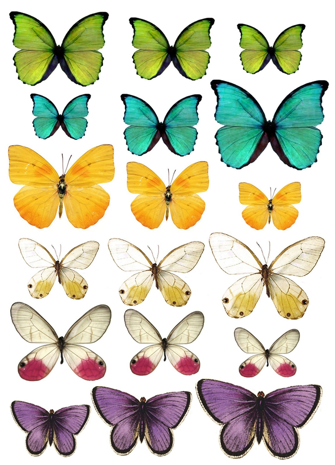 It's just an image of Astounding Free Printable Butterflies