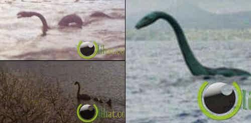 7 Danau ini terdapat Makhluk Raksasa Misterius
