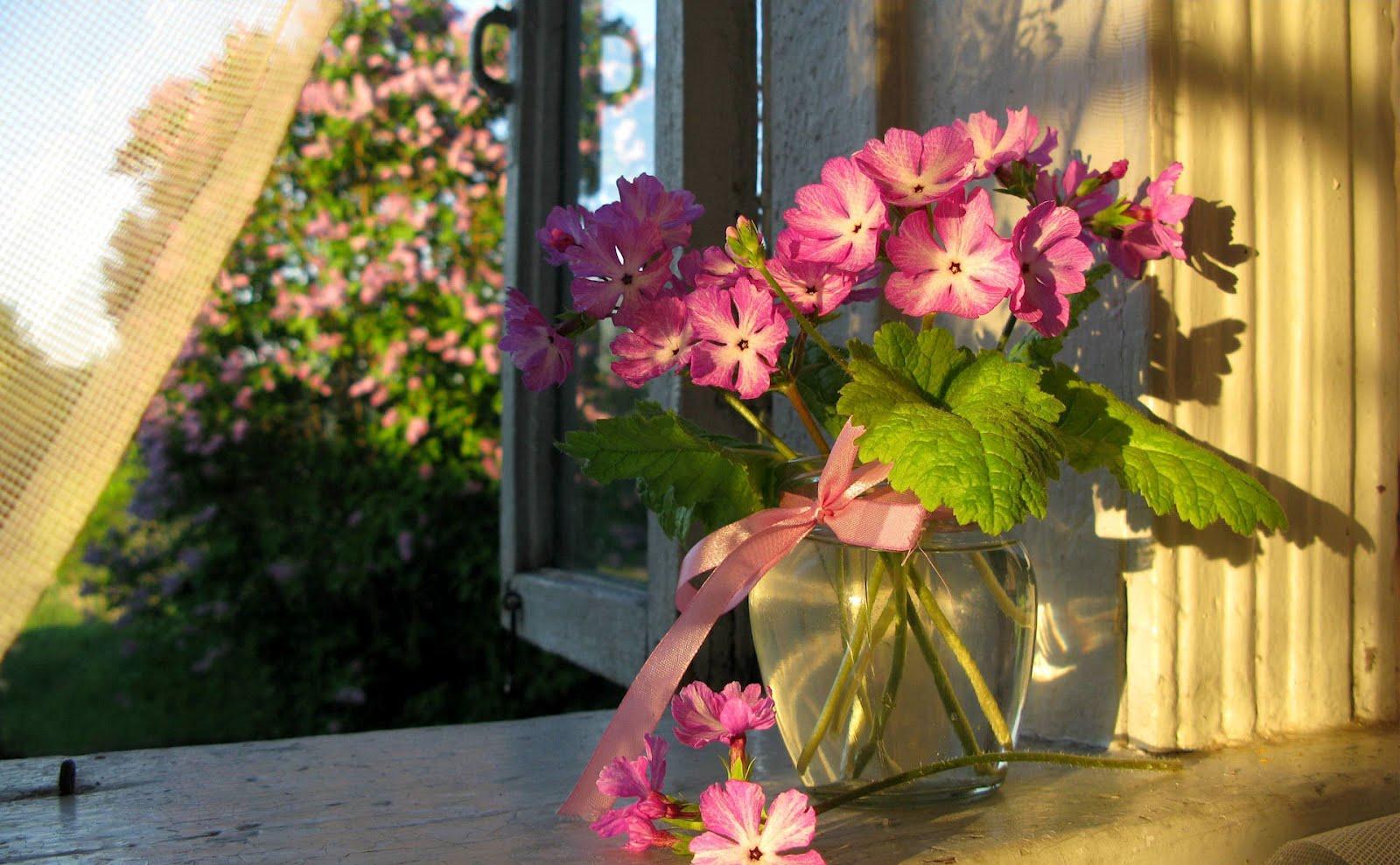 Картинки вазы с цветами