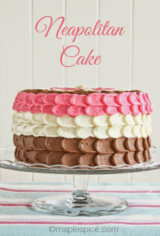 Neapolitan Layer Cake - all vegan!