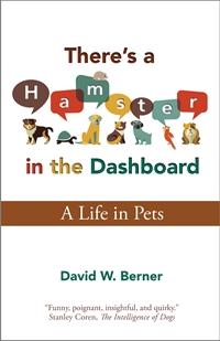 There's a Hamster in the Dashboard (David W. Berner)