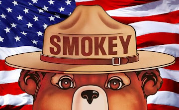 ONLY YOU CAN PREVENT WILDFIRES