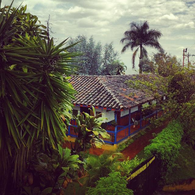 Eje cafetero Colombia de una / Toya Viudes