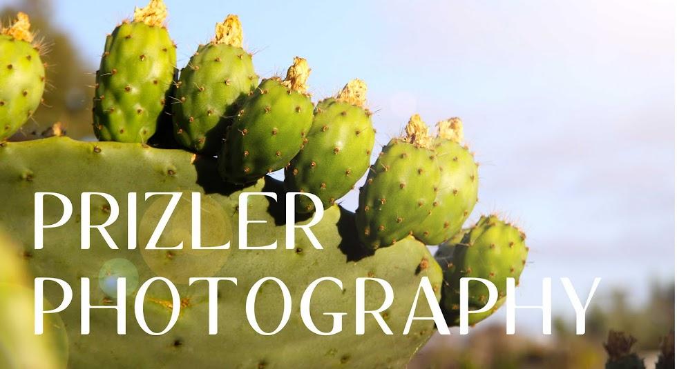 Prizler Photoblog
