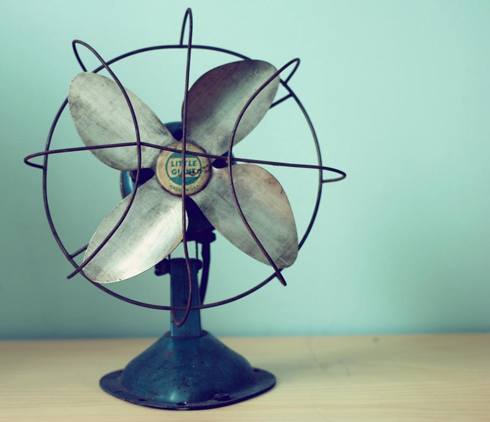 Vintage Fan 99
