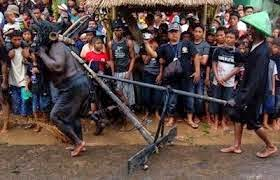 Tradisi Kebo-keboan Banyuwangi
