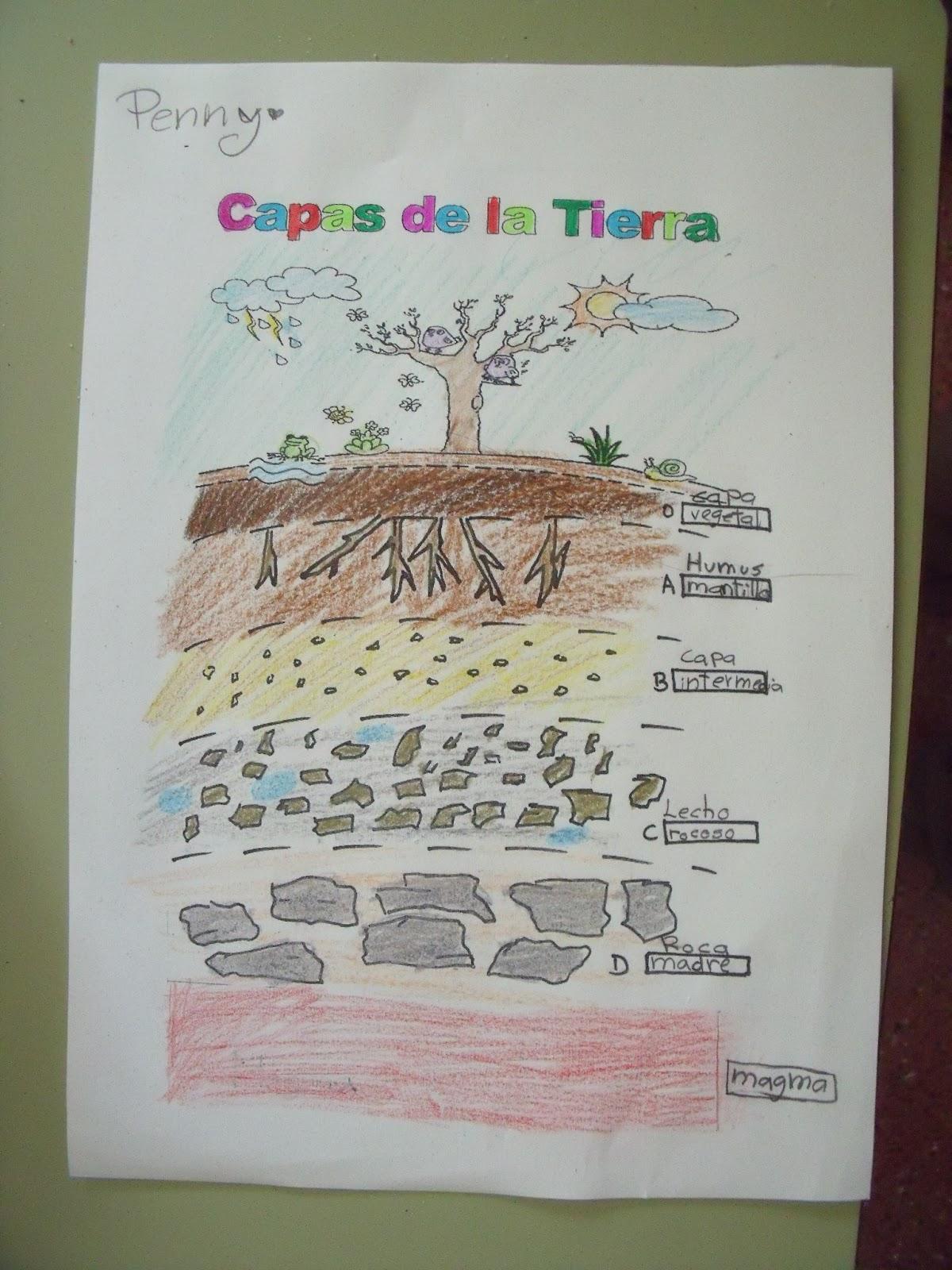 Parque nacional de ordesa y monte perdido pero c mo es for El suelo y sus capas