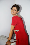 Shilpa chakravarthy new glam pix-thumbnail-20