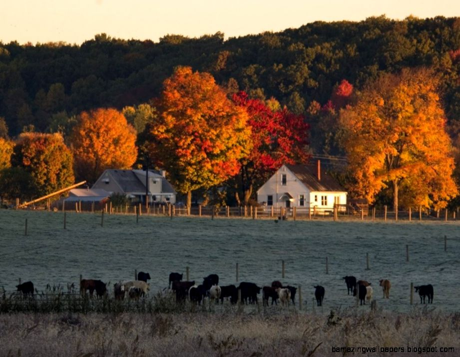 1000 images about farm pictures on Pinterest  Farms Autumn and