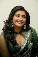 Raagini Dwivedi Hot Photo
