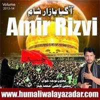 http://ishqehaider.blogspot.com/2013/11/amir-rizvi-nohay-2014.html