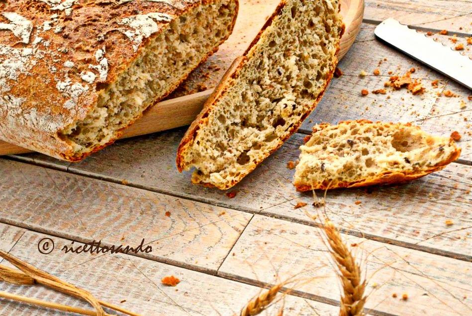 Pane integrale ai semi con lievito madre ricetta lievitati