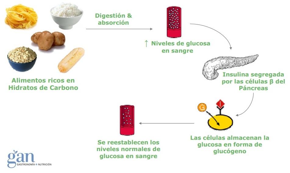 Ndice gluc mico vs carga gluc mica entrena salud - Alimentos bajos en glucosa ...
