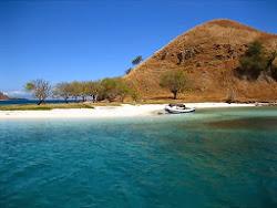 Search for Hotels in Labuan Bajo