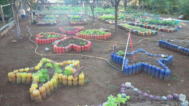 Super Escola Municipal Inicia Atividades do Projeto Educando com a Horta  DE56