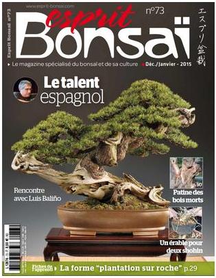 http://www.esprit-bonsai.com/magazine/magazines-papier-a-l-unite/3265-esprit-bonsai-n-073.html#menu_centre