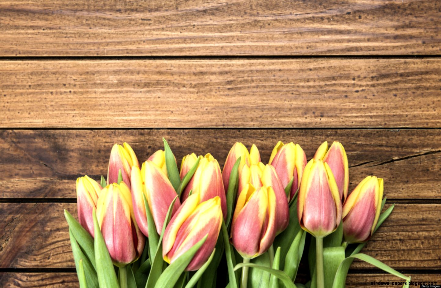 Spring Health Benefits 6 Reasons To Love The Season
