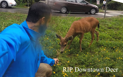 RIP Downtown Deer