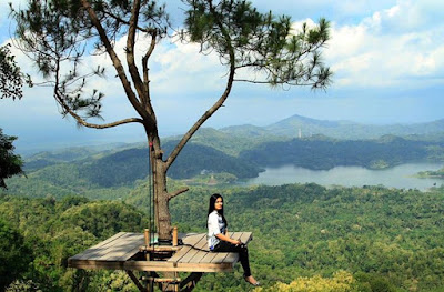 Berfoto di Rumah Pohon Kalibiru Kulon Progo