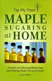 Its Maple Syrup Time!