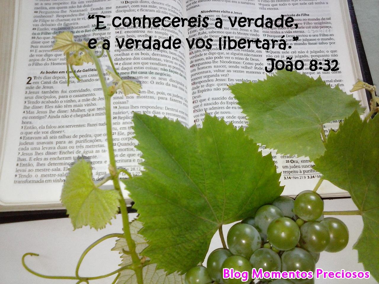 Importância da palavra de Deus Uva Verde