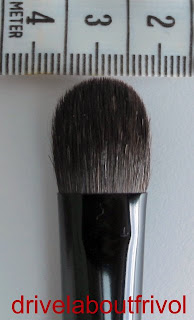 Chikuhodo Z-5 brush