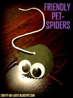 friendly pet spider