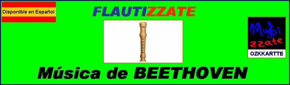OZKKARTTE Flauta, Explorando la Música de Beethoven