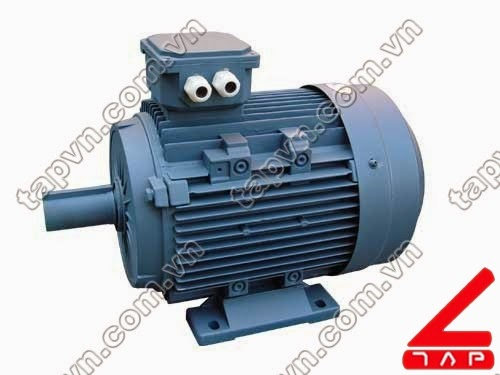 Động cơ điện 3 pha Y2 series