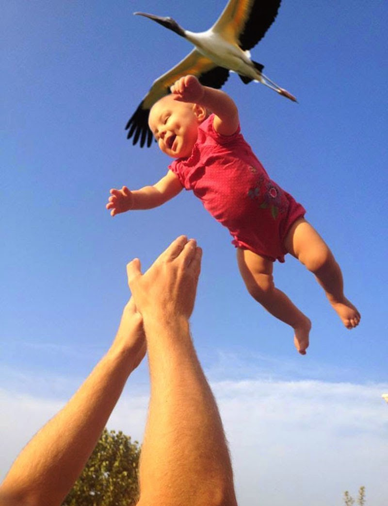 30 Pictures Taken At The Right Moment - Flying free with the birds!