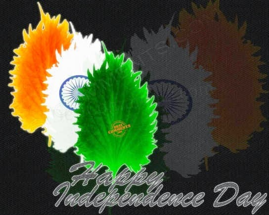 misuse of independence day Misuse of law victim's struggle for justice happy independence day 15 aug victims of misuse of 498 a and dv.