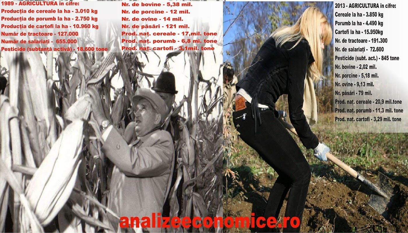 Cum arată agricultura de astăzi față de cea din comunism