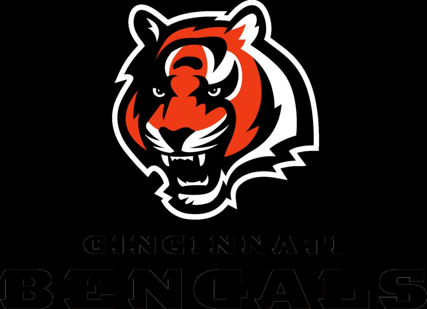 1000 images about Cincinnati Bengals on Pinterest  Cincinnati