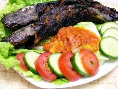 manfaat ikan lele untuk bayi,ikan lele untuk ibu hamil,ikan lele bagi manusia,