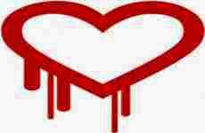 Qué es Heartbleed y cómo protegerse