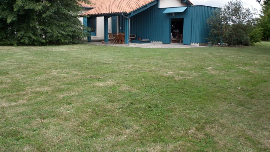 scarification pelouse quand collection design inspiration pour le jardin et son. Black Bedroom Furniture Sets. Home Design Ideas