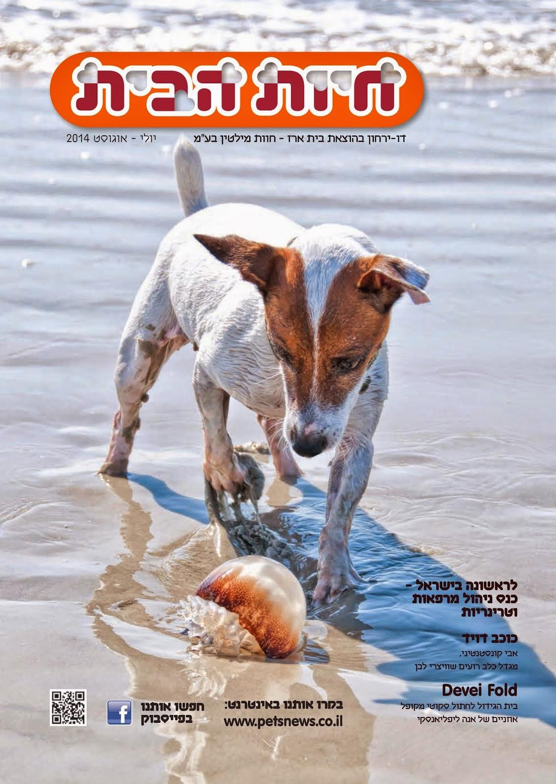 PetsNews, July/August (2014)