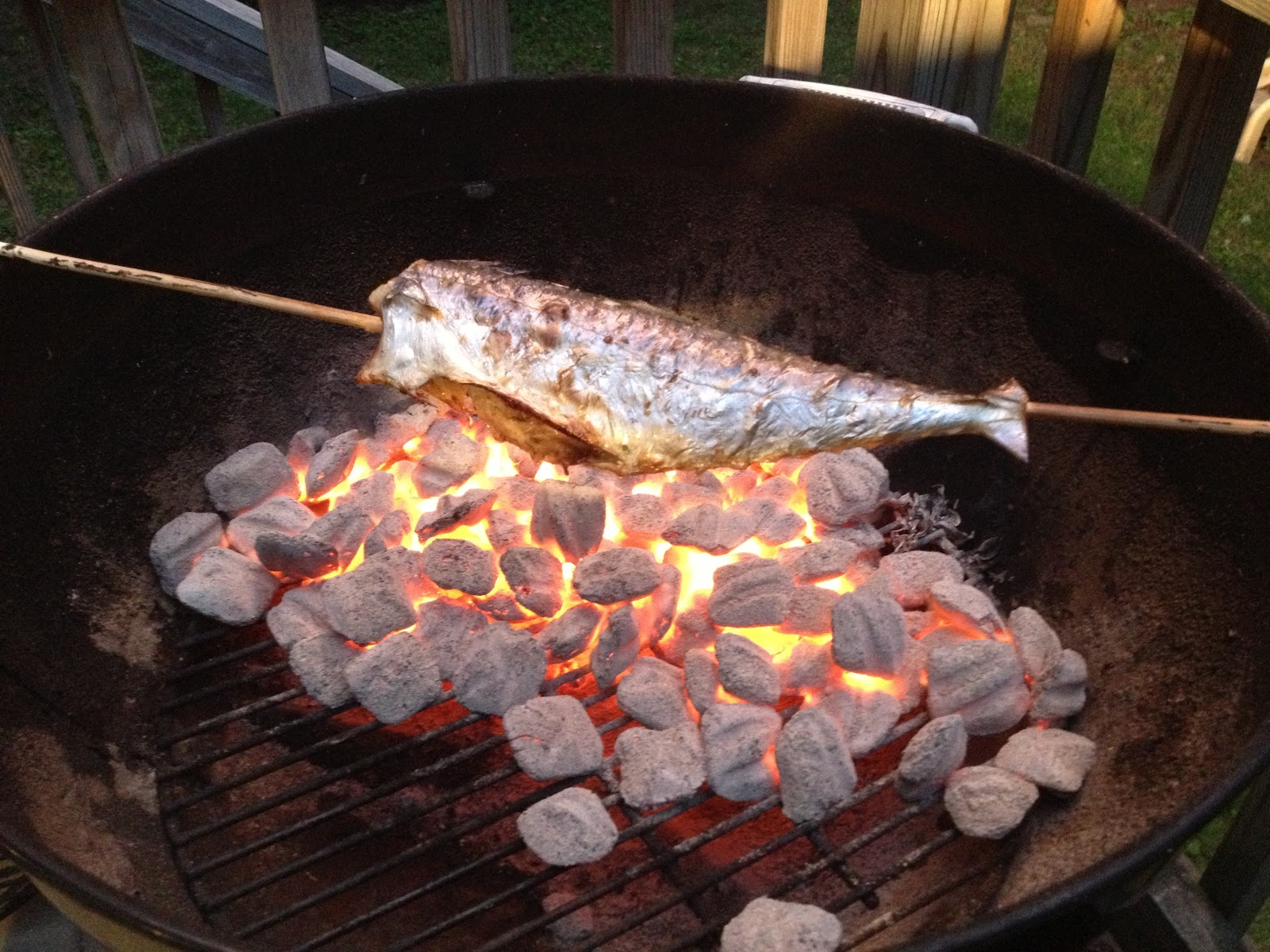 Eating technique for roasting fish on a stick for Fish on a stick