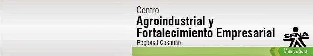 Regional Casanare