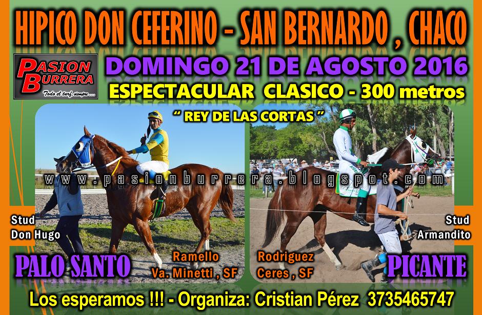 SAN BERNARDO - 21 DE AGOSTO