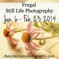 Frugal Still Life Photography