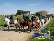 XIV Passeio a cavalo da Associação de Romeiros da Tradição Moitense