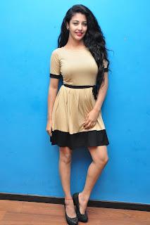 Daksha Nagarkar  Pictures at Hora Hori Movie Interview  252850)
