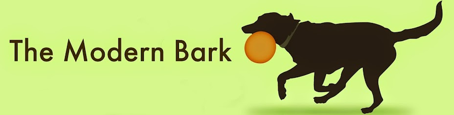 The Modern Bark | Dog Training Tips