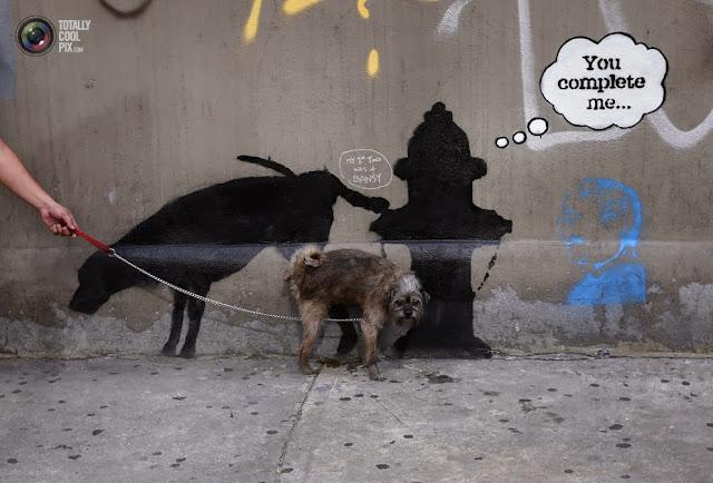 Собака мочится на новую работу английского художника граффити Бэнкси на западной 24-й улице в Нью-Йорке. (Mike Segar/REUTERS)