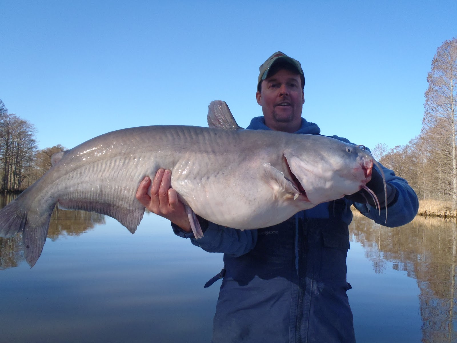 Fishing the chesapeake river monsters james river catfish for James river fishing