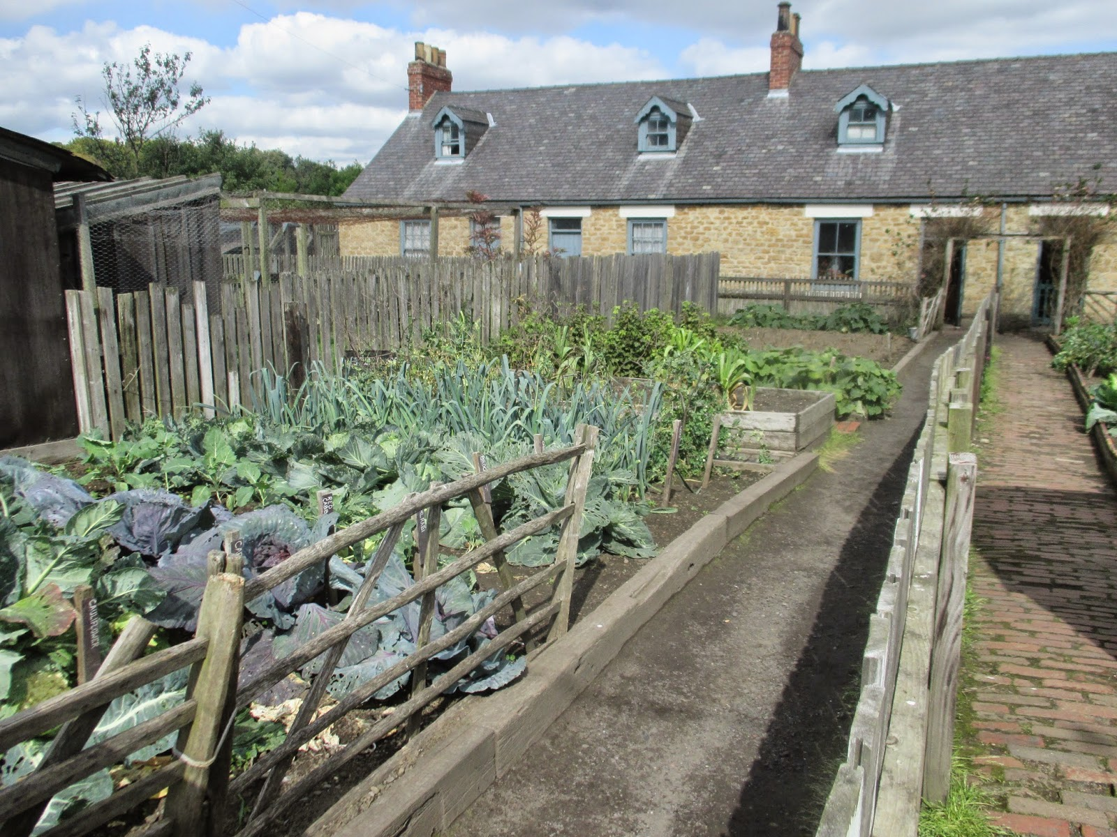 Wartime Kitchen Garden Dvd Remembering The Old Ways 2014 08 31