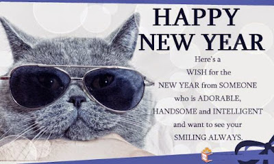 happy new year 2016 funny images