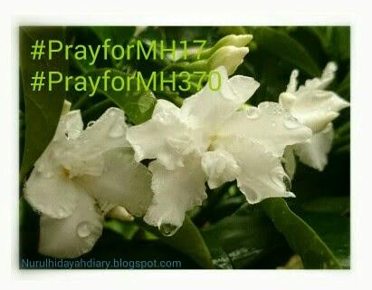 Pesawat MH17 terhempas di Ukraine